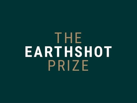 Silvio Barros: The Earthshot Prize