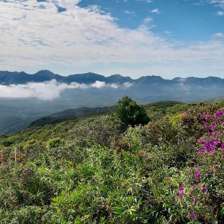 IAT proíbe acesso a parques de montanha a partir deste final de semana