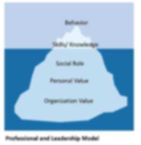 Professional and leadership model.jpg