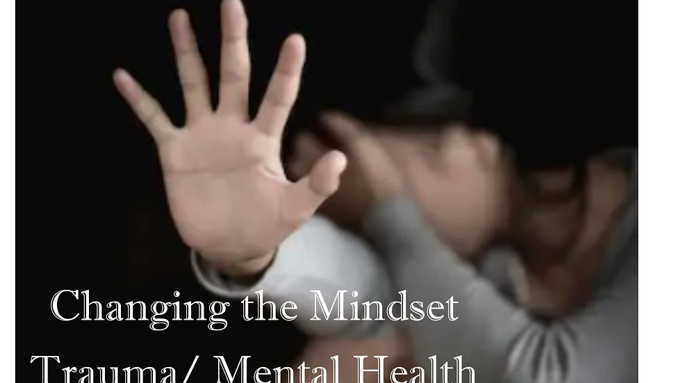 Changing the Mindset Mental Health and Trauma Model
