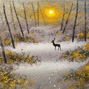 Red Deer in wood