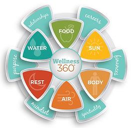 IAWP-Wellness-360-Wheelv1.jpg