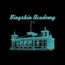 bingskin academylogo.png