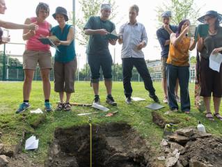 Soils are an interdisciplinary medium