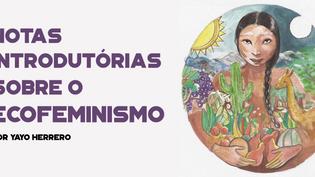 Notas introdutórias sobre o ecofeminismo