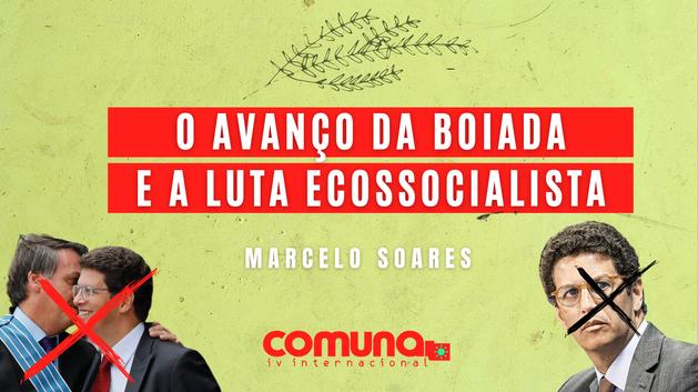 O avanço da boiada e a luta ecossocialista no Brasil