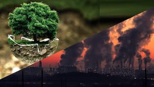A destruição capitalista do meio ambiente e a alternativa ecossocialista