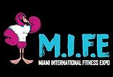 MIFE Logo