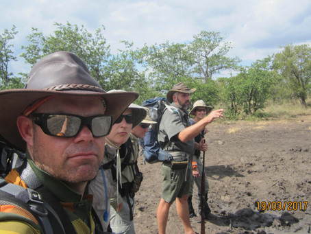 Hiking Safari: Different and better than anything you may have done before.