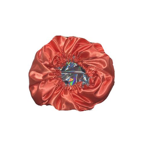 Holographic Reversible Bonnet