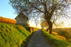 Heppenheim, DE