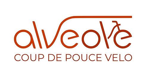 logo-alve_edited.jpg