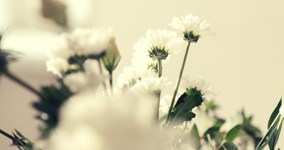 """AROMA VITA+…アロマヴィータプラス  AROMA=香り VITA=LIFE=生活 +=その人のプラスになるように 香りのある生活がより豊かに幸せになりますように ~COMCEPT~ Natural  であること SIMPLE  であること Handcraft ぬくもり AROMA VITA+の伝えたいNew Natural Life ---------------------------------------- AROMA VITA +では   人や地球の美しさの原点はシンプルなナチュラルライフに戻ることだと考え ナチュラル原料のみで作られた上質な無添加コスメやフレグランス、  アロマミストを製作し様々なイベントで販売しています。 昨今では店舗でのナチュラル素材を使ったデコレーション、香りによる空間コーディネート、 オリジナルアロマワークショップなど活動は多岐に渡ります。  香りによる空間コーディネートとは・・・  """"香りによる記憶へのリンク""""を提案し、 イベント、アーティストの曲のイメージを調香し  空間コーディネート、フレグランスオーダーもお受けしております。"""