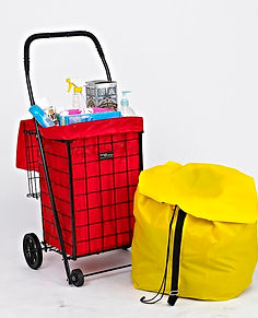 032-BK with RED LINER & groceries.JPG
