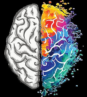 kisspng-human-brain-creativity-your-crea