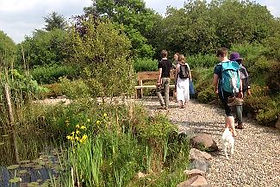 pond walk.jpeg