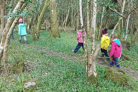 Forest school walking.jpeg