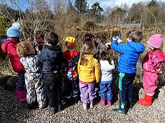 forest school pond.jpeg