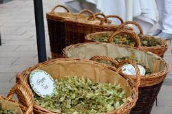 kräuterfest meilenstein robert franz