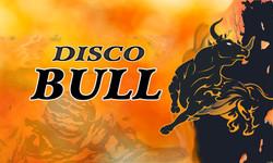 disco bull velden nightlife party