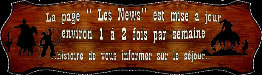 lapagelesnews.png