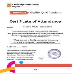 Сертификат - 1