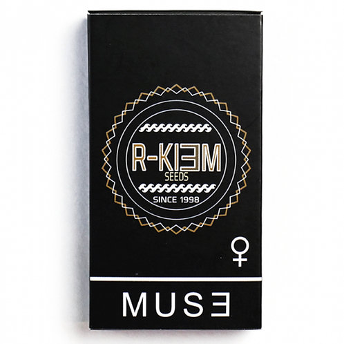 FEM - MUSE X3 UNIDADES