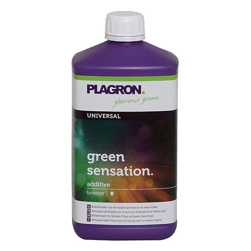 GREEN SENSATION 1L