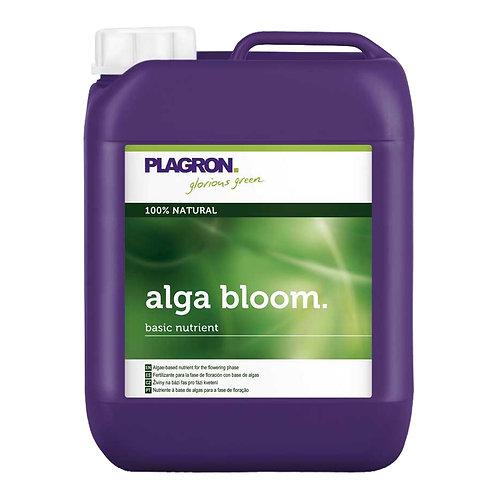 ALGA BLOOM 5L