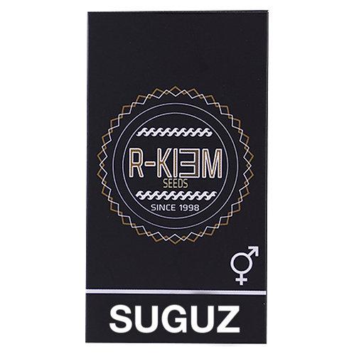 REGULAR - SUGUZ X10 UNIDADES