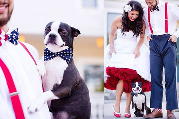 ADORABLE WAYS TO INCLUDE YOUR FUR BABIES!