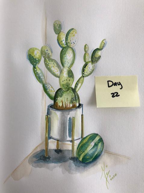 Pasteque et cactus (watermelon and cactus).