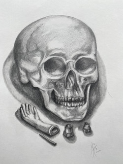 Skull and objects