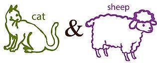 sheep&cat.jpg