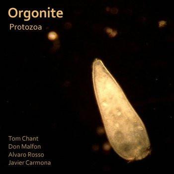 """Orgonite """"Protozoa"""""""