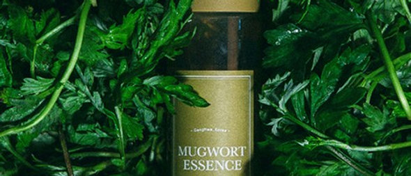i'mfrom, Mugwort (100%) Essence 160g