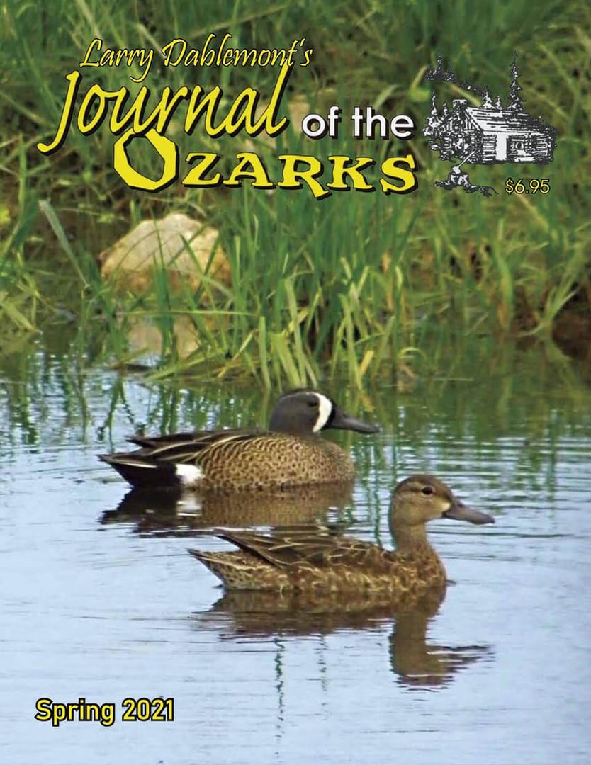 journal spring 2021.jpg