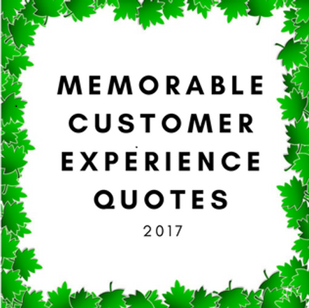 Customer Experience Quotes Fascinating Memorable Customer Experience Quotes Of 2017  Bgelbendorf