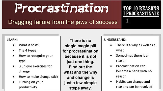 Beat Procrastination Training