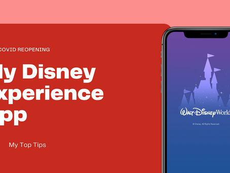 My Tips on Setting Up A My Disney Experience App