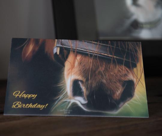 Pony Nose (Happy Birthday)