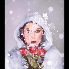 Roses01.jpg