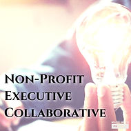 Non-Profit Executive.jpg