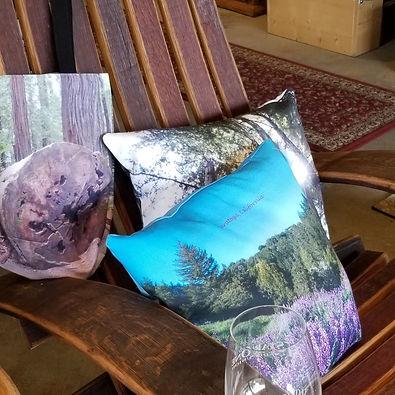 chairs_pillows crop.jpg
