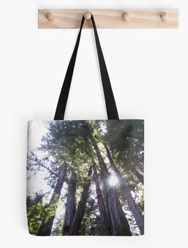 ToteBag_Henry Cowell Redwoods 03.05.2015