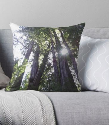 henry cowell pillow cover capture