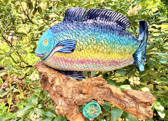 Fisch Barsch