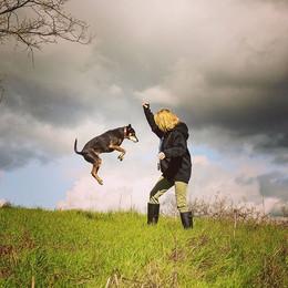 Jump, Roo, jump! #dogsofinstagram #dogad