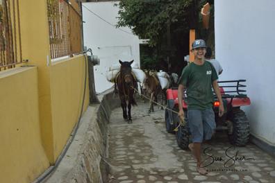 Yelapa1b_5101.jpg