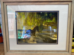 12x20 framed print B